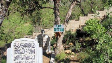 Seyyid Taha Hazretleri