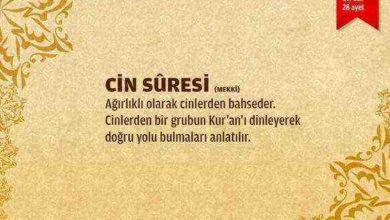 Cin Suresi