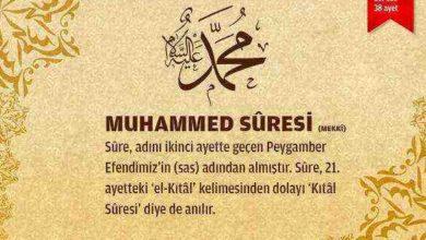 Muhammed Suresi