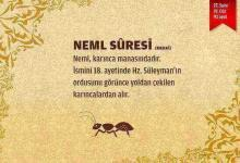 Neml Suresi