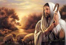 Çobanın Aşkı